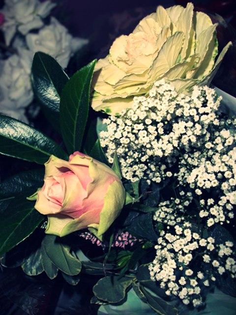 blogspot+577.jpg