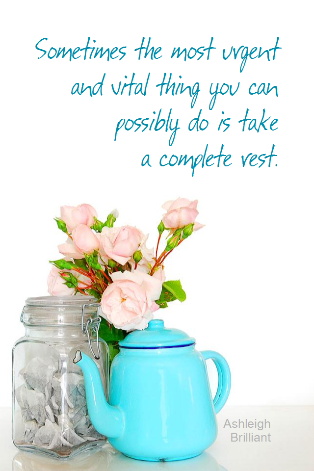 visual quote - image quotation for CALMNESS - Sometimes the most urgent and vital thing you can do is take a complete rest. - Ashleigh Brilliant