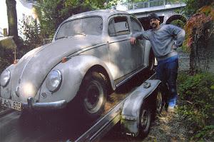 Frosch`s 1960er