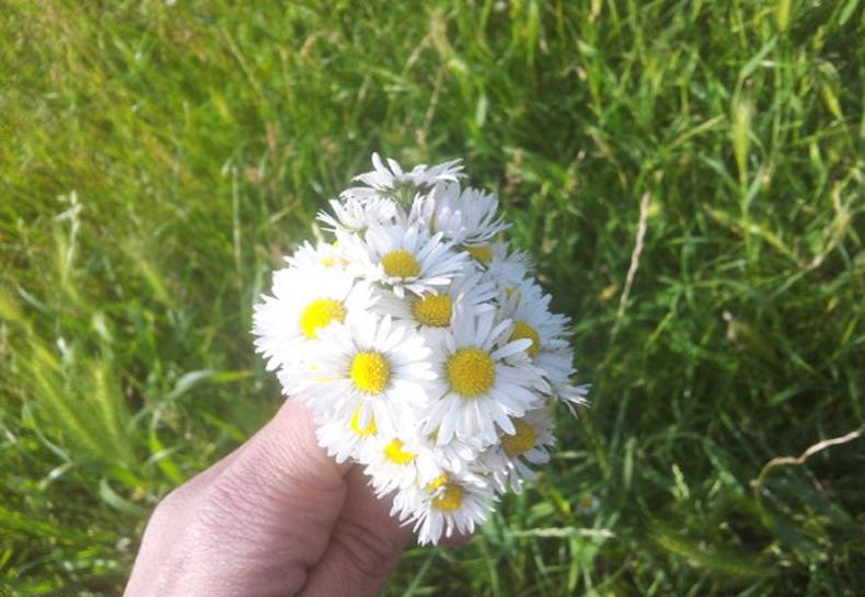 Tuto couronne de fleurs mlle kaffaniata - Tuto couronne de fleur ...