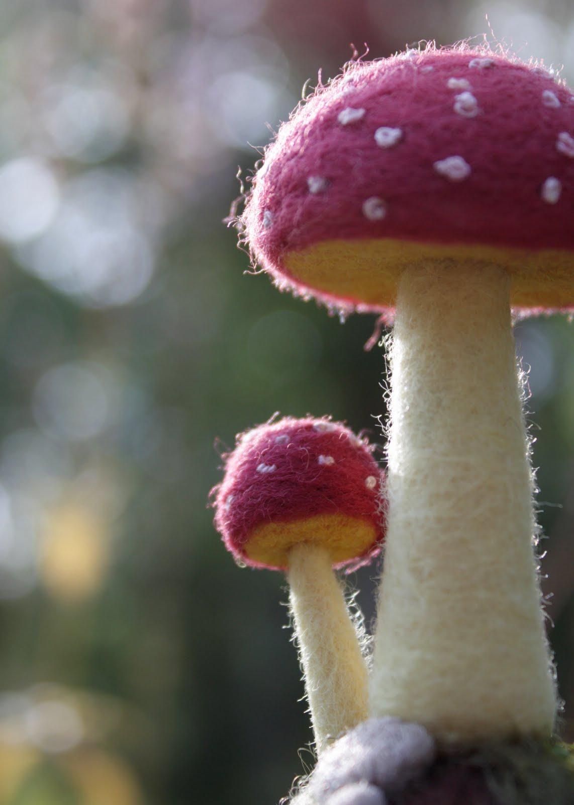 Lil Fish Studios  An End To Mushroom Week