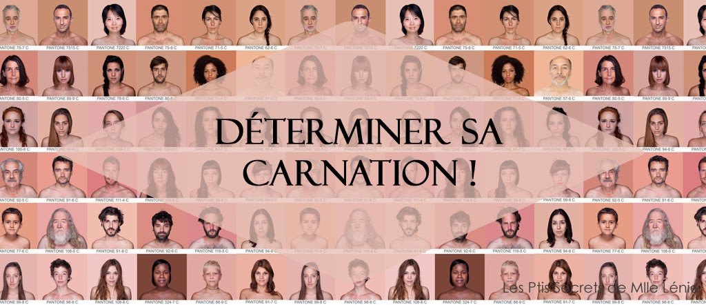 Déterminer sa Carnation !