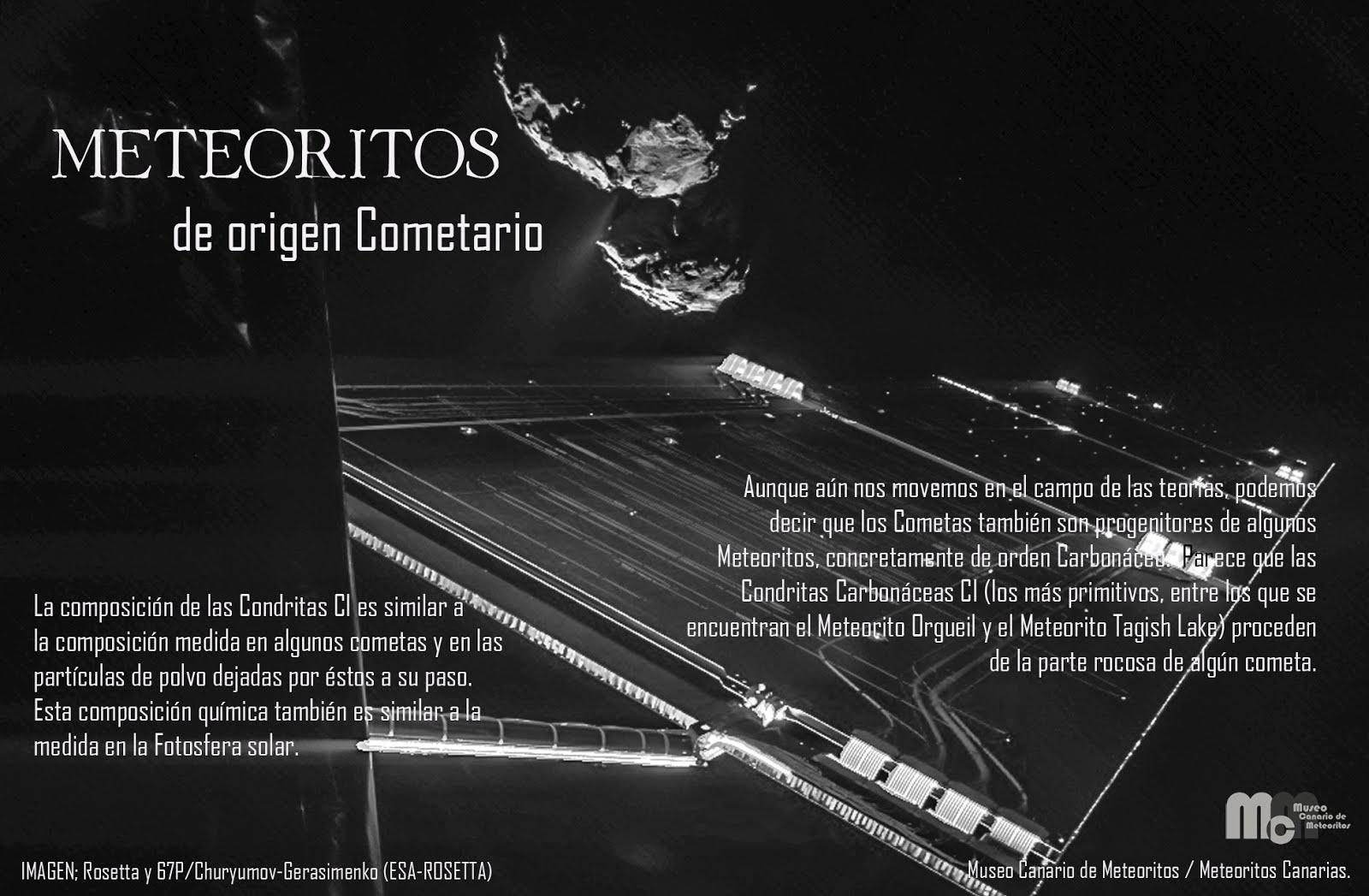 Cometary meteorites