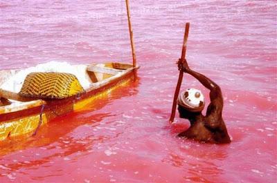 4 Danau Berwarna di Indonesia