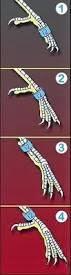 Como anilhar as nossas aves