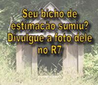 R7 (Record) Ajuda a encontrar seu bichinho perdido.
