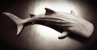shark home decor