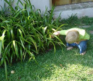 La chasse aux œufs, même en famille, c'est rarement une partie de plaisir