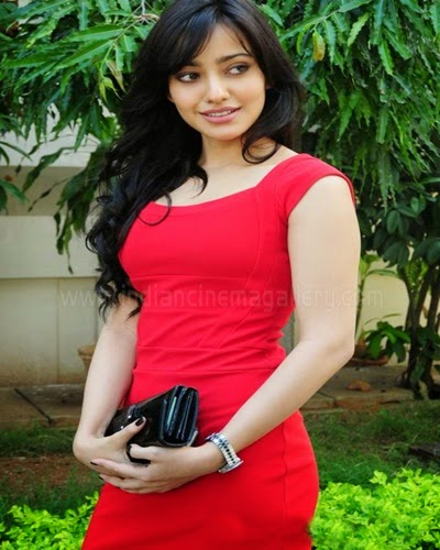 neha sharma hot photo gallery