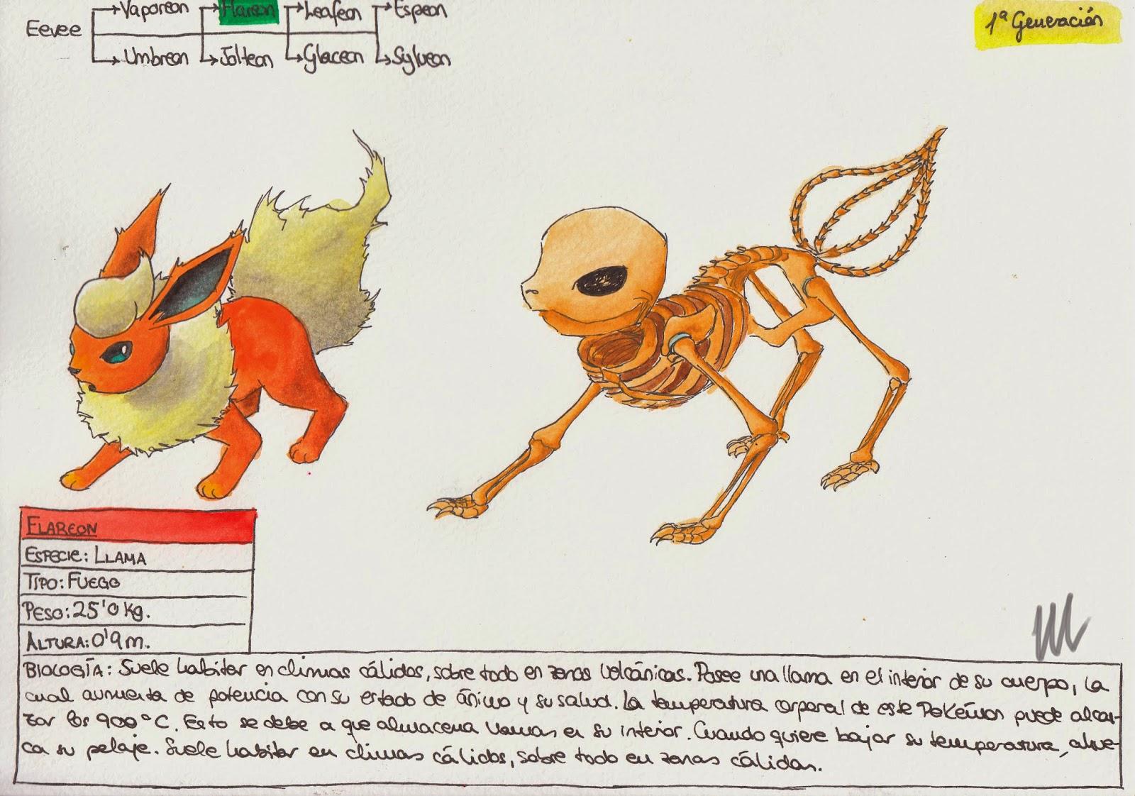 Anatomía Pokémon: Eevee, Vaporeon, Umbreon, Flareon, Jolteon,Leafeon ...