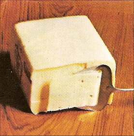 Brick Cheese2