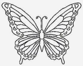 Pictures Of Butterflies To Color Free Coloring Pictures