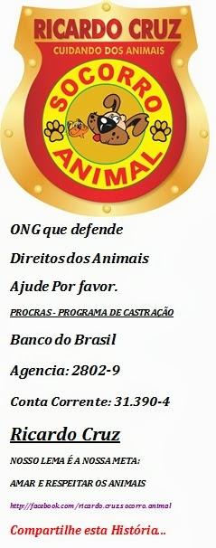 Socorro Animal