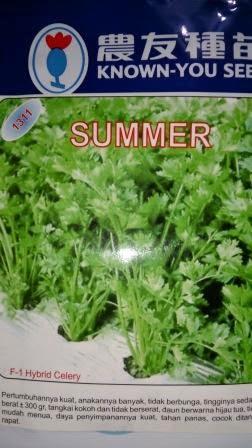 Seledri, Benih, Summer, Harga murah, Tahan cuaca hujan, Potensi hasil tinggi