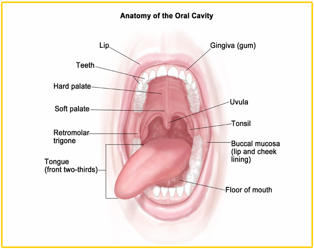 Treatment & Cure of Tonsils through Spirituality   Healing Diseases