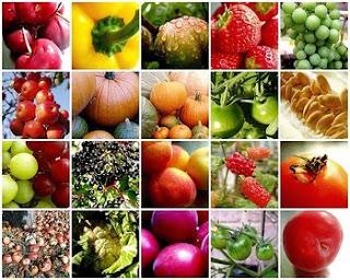 buah dan sayur baik untuk perokok