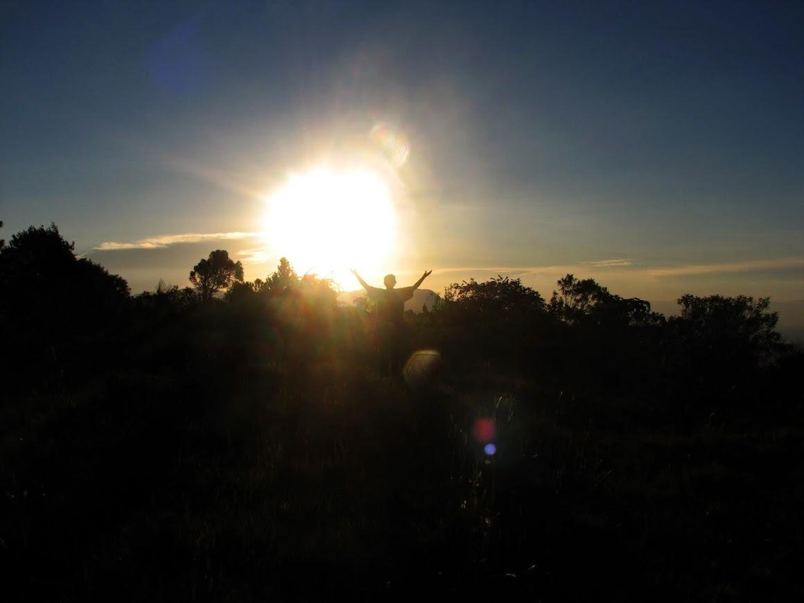 El brazo del Sol