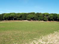La plana de davant el Santuari del Corredor
