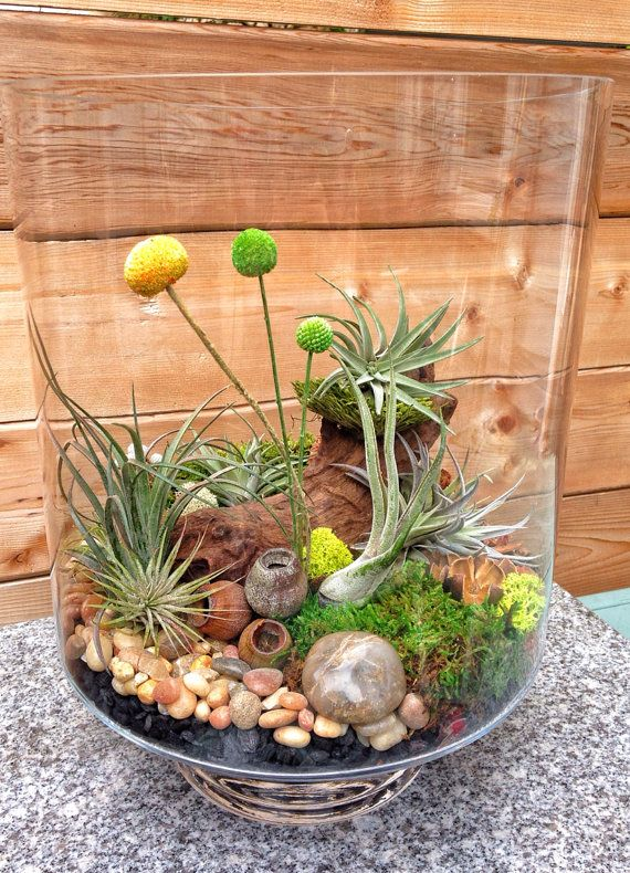 amazing terrarium decor ideas for your indoor garden. Black Bedroom Furniture Sets. Home Design Ideas