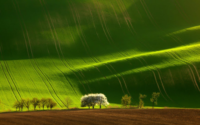 Beauty of Moravia
