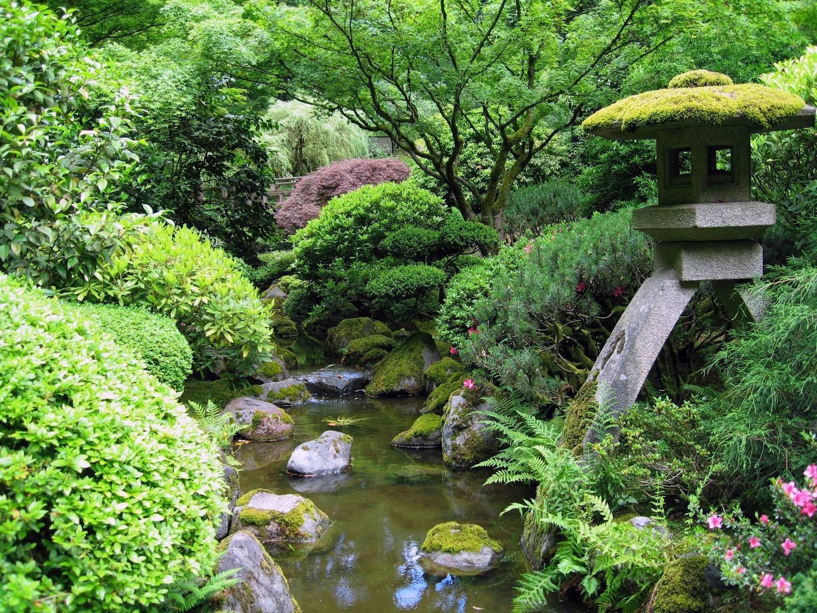 Kumpulan Desain Taman Rumah Jepang Terbaik