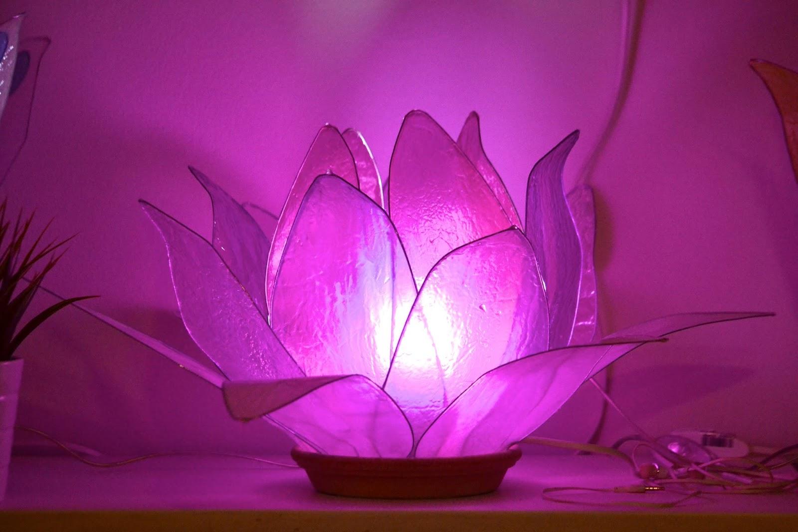lampada fiore di loto ninfea