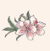 Le stagioni dei fiori