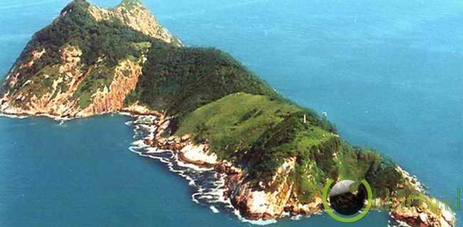 Llha de Queimada Grande, Brazil