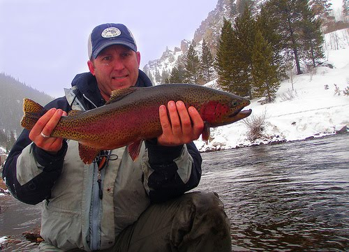 Fly fish addiction late winter trophy trout fishing cold for Winter trout fishing