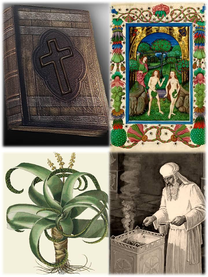 INCIENSOS Y AROMAS EN LA BIBLIA