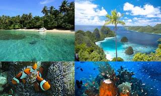 Taman-Nasional-Teluk-Cendrawasih.jpg