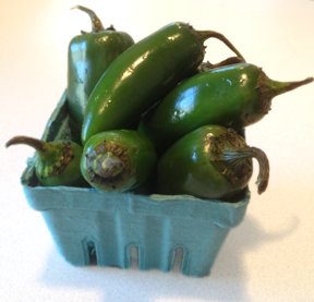 Fresh Jalapeño peppers right from the farmers market