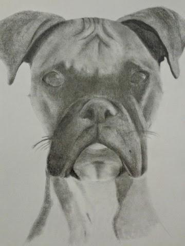 Aprendiendo Mis Dibujos De Perros A Lápiz