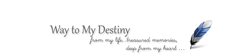 Way to My Destiny