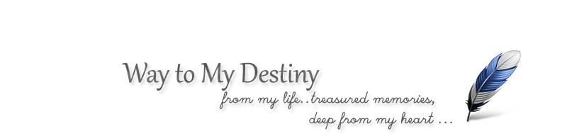 Way to My Destiny