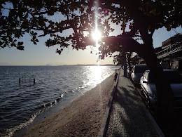A paz que quero para mim, é simples como Mauá.