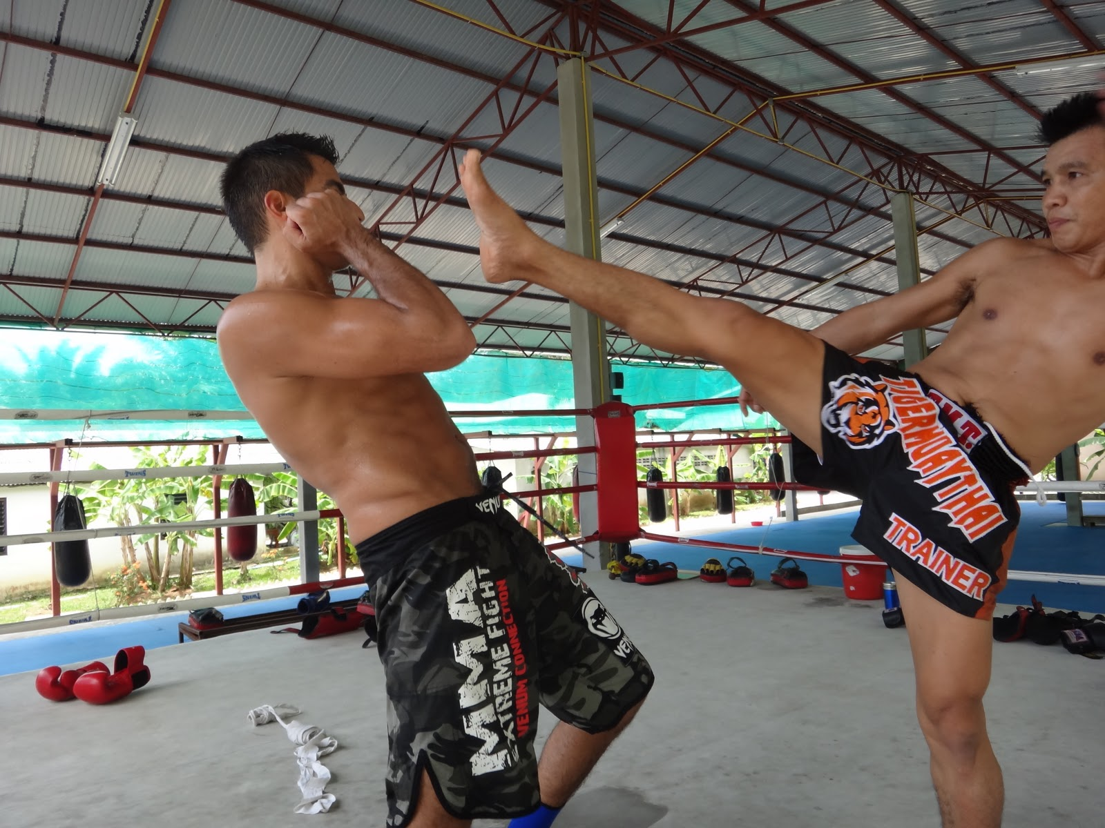 Displaying 15> Images For - Muay Thai Techniques For Beginners