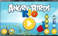 Angry Birds Angry Bird