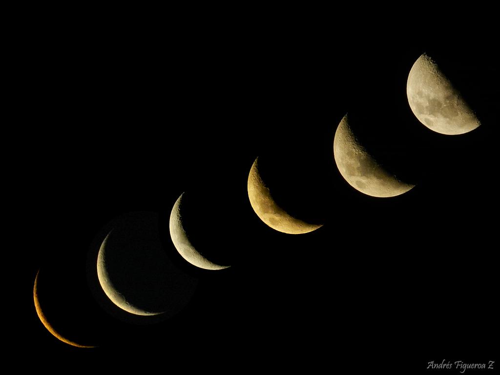 Luna cresiente 2016 luna creciente en febrero 2016 search for Cuarto menguante de la luna