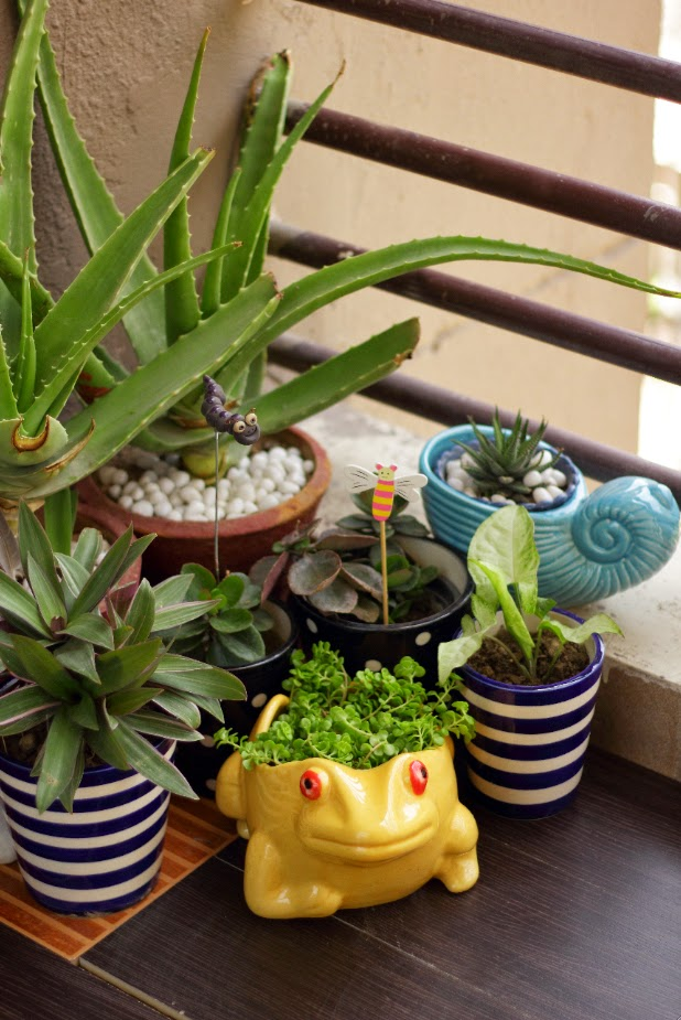 Indian Balcony Garden