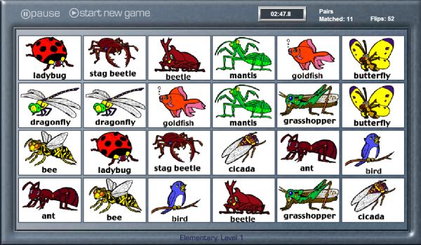 EL BAÚL DE INNELA: Aprendemos nombres de insectos en inglés