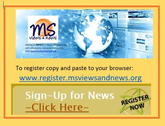 MS Views and News (MSVN)