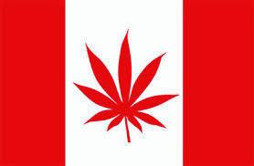 Canadá e a política do cânhamo