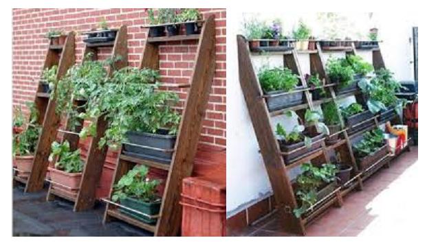 Cultivar un huerto urbano un huerto vertical para casa for Como construir jardines verticales caseros