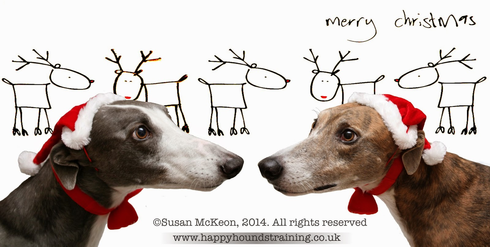Image@ Two greyhounds wearing Christmas hats.