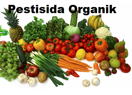 Cara Membuat Pestisida Organik Mudah Dan Simpel