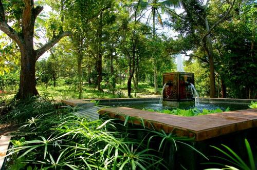 Kebun Durian dan Wisata Agro Temu Kencono Semarang :