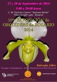 Exposición en Rosario