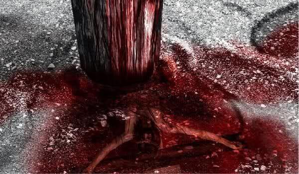 Este é aquele que veio por meio de água e sangue, Jesus Cristo: não somente por água, mas por água e sangue (1Jo 5.6a)