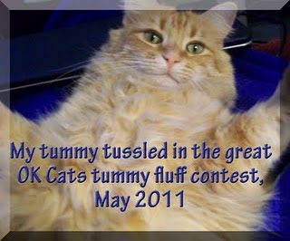 2011 Tummy Fluff Contest